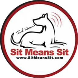 Dog Training Stamford Ct