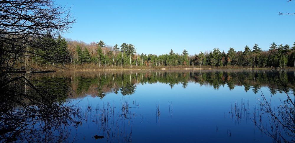 Leverentz Lake State Forest Campground: Webber Township, MI