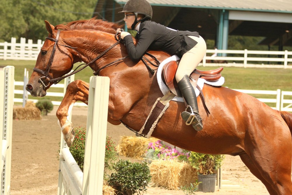 Foxcroft Farm Equestrian Center: 12850 New Providence Rd, Milton, GA