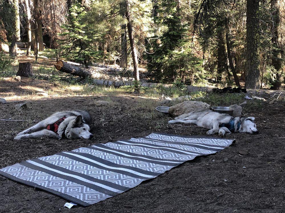 Quaking Aspen Campground: Giant Sequoia National Monument, Springville, CA