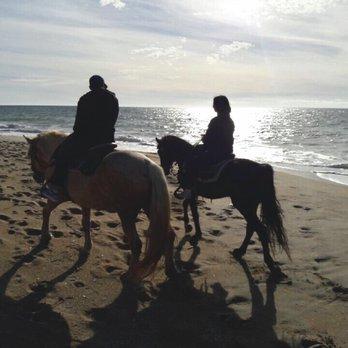 Monterey Bay Equestrian Center 209 Photos Amp 159 Reviews
