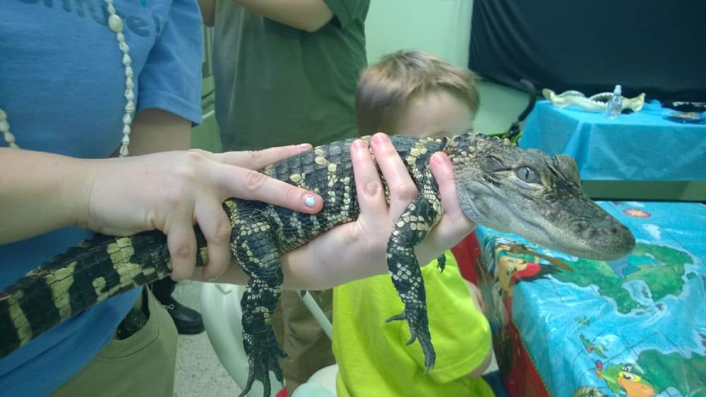 Auto City Dallas Tx >> Photos for Children's Aquarium at Fair Park - Yelp