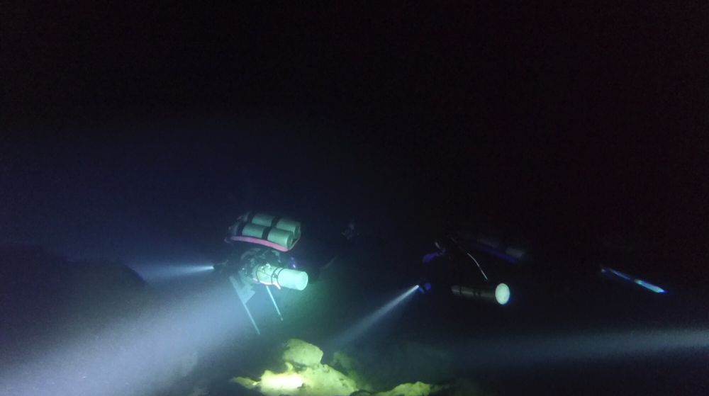 Exotic Dive Center: 20633 Amar Rd, Walnut, CA