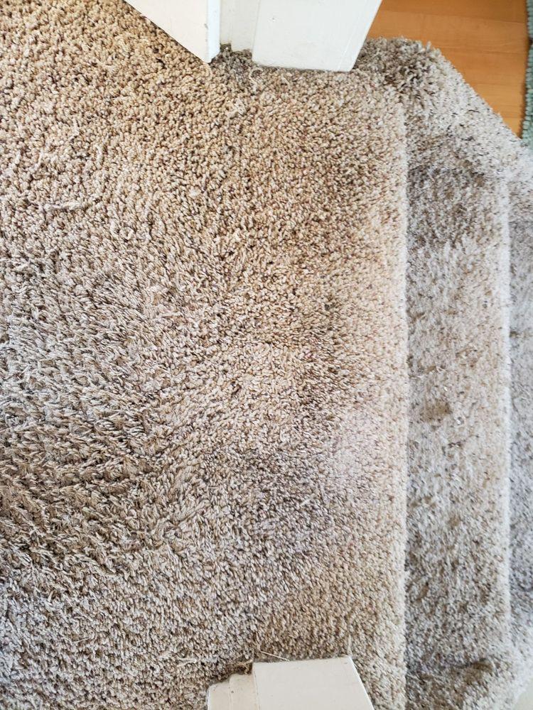 Genuine Carpet Repairs
