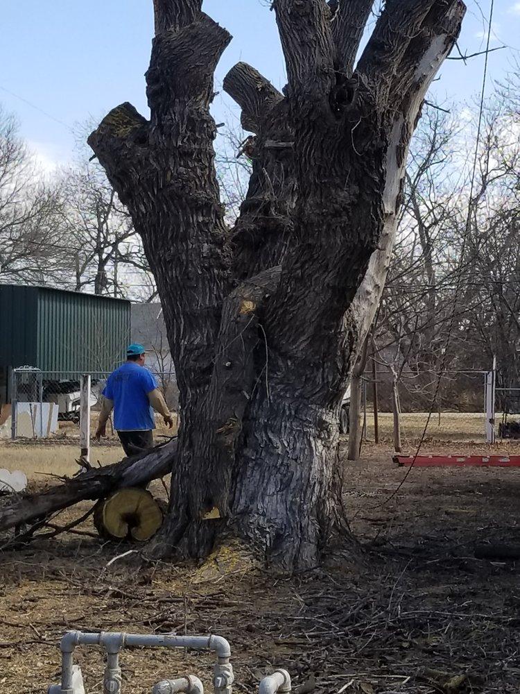 A Cutt Above Tree Service: Abilene, TX
