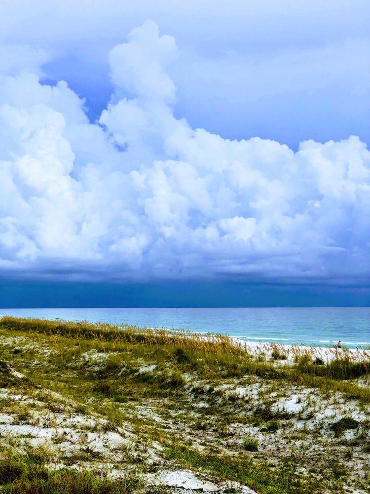 Henderson Beach State Park: 17000 Emerald Coast Pkwy, Destin, FL