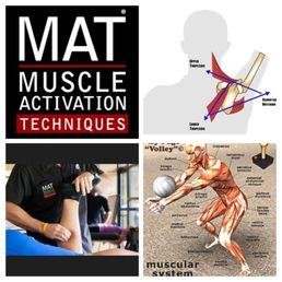 muscle activation specialist near me