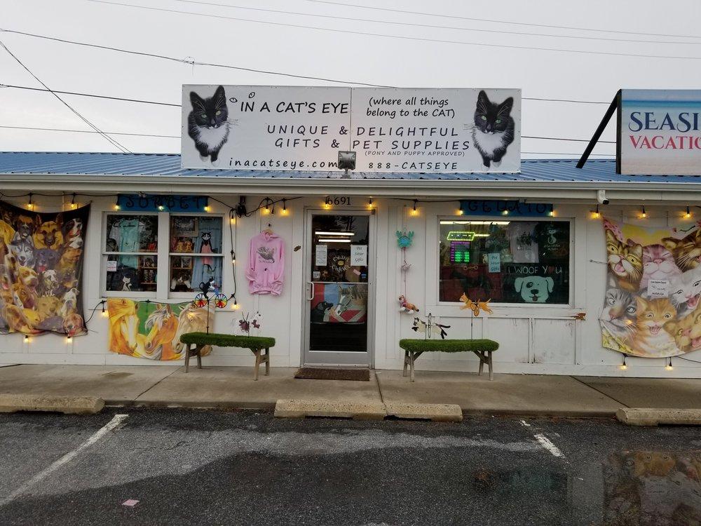 IN A CAT'S EYE: 6691 Maddox Ave, Chincoteague, VA
