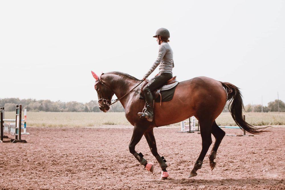 Allegro Equestrian: 7620 S Grove St, Haysville, KS