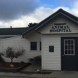 Fremont Animal Hospital Veterinarians 4825 Snyder Ave Fremont