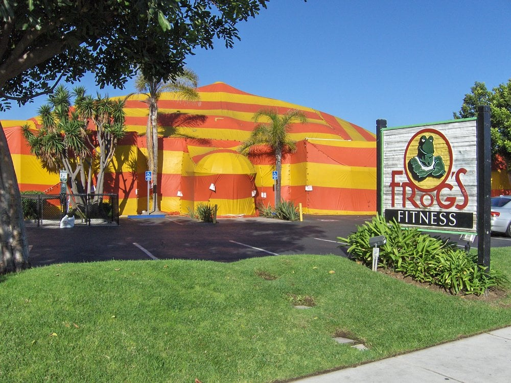 Frogs Gym Fumigation Yelp