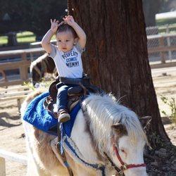 Video Eden Park ist Ponys, Galerie bild dreier