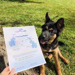 Rob Cary Pet Resort - 30 Reviews - Pet Training - 14824