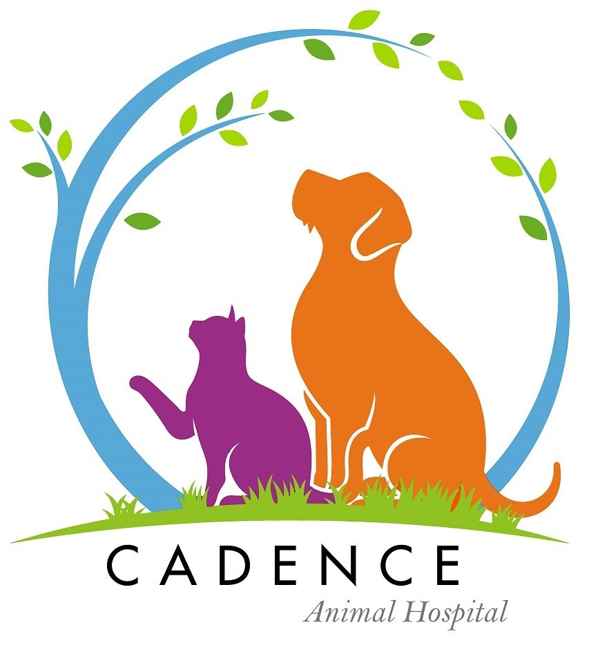 Cadence Animal Hospital: 1190 E Sunset Rd, Henderson, NV