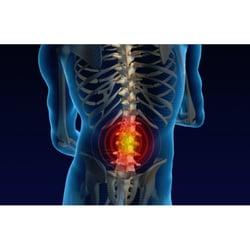 Siegal Chiropractic Chiropractors 5600 Pga Blvd Palm Beach