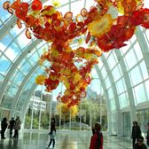 Dale Chihuly S Vibrant Gl Sculpture Garden