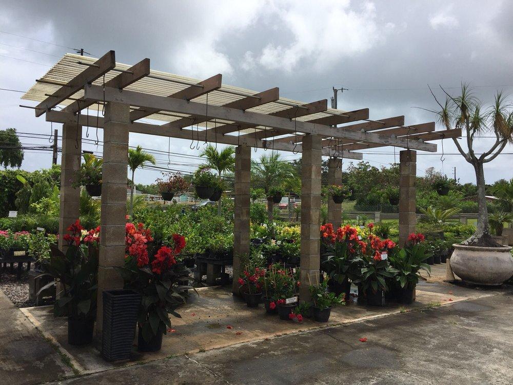 Glenn's Flowers and Plants
