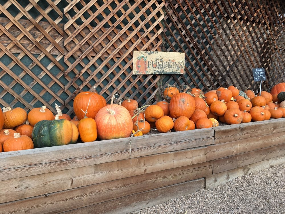 Munson's Farm Stand: 7355 Valmont Rd, Boulder, CO
