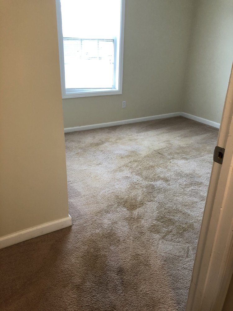 Patriot Carpet Cleaning and Restoration: Clarksville, TN