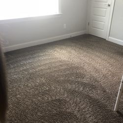 Photo Of Carpet Pro Cleaners  Cary NC United States