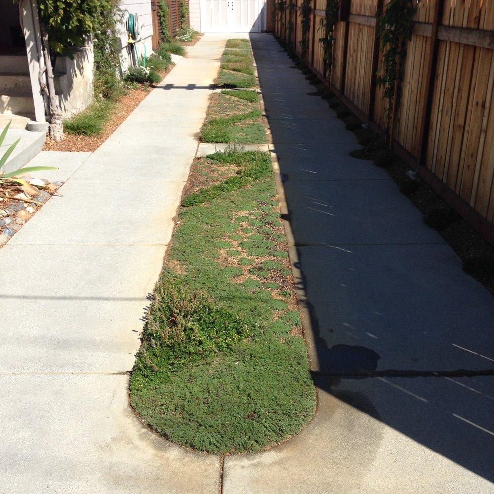 AC Bentley Concrete: 885 Buena Vista Dr, Watsonville, CA