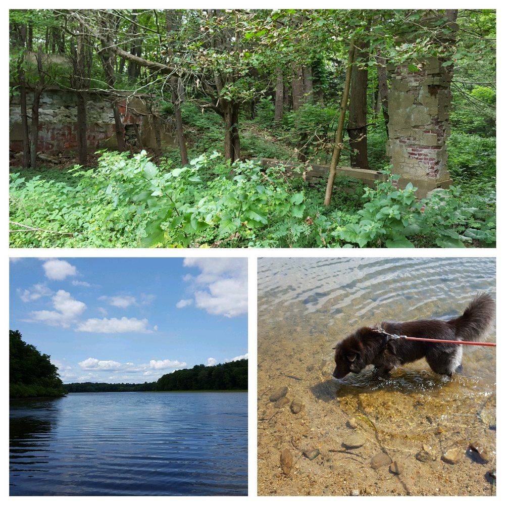 Social Spots from JC Phillips Nature Preserve