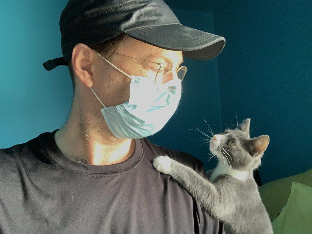 Adventures in Sitting Kitties: Seattle, WA