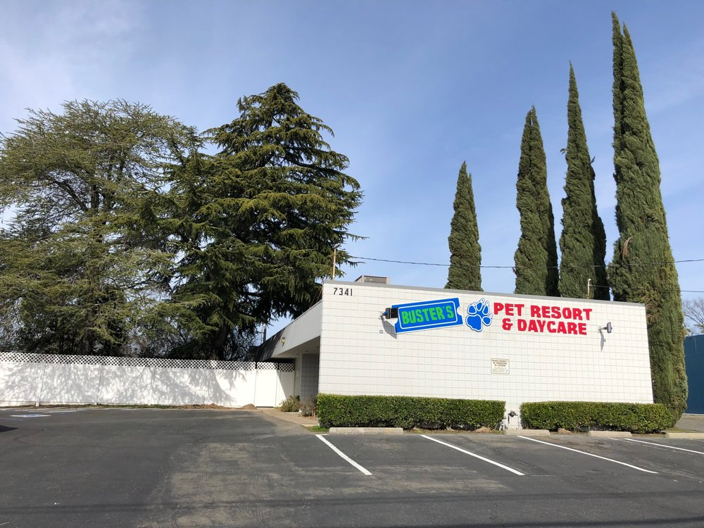 Buster's Pet Resort & DayCare: 7341 Winding Way, Fair Oaks, CA
