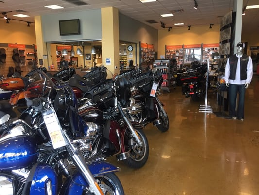 toad suck harley davidson motorcycle dealers 1110 collier dr conway ar phone number yelp. Black Bedroom Furniture Sets. Home Design Ideas