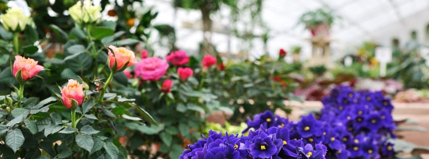 Good Hope Gardens And Landscape: 5237 Hwy 126, Blountville, TN