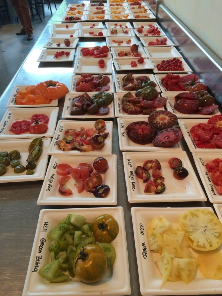 Palmetto Tasty Tomato Festival: 1005 Airport Blvd, Columbia, SC