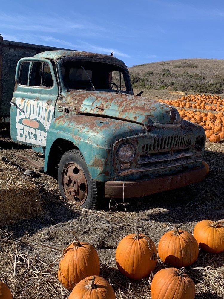 Rodoni Farms - U Pick Em Pumpkins: 4444 Hwy 1, Santa Cruz, CA