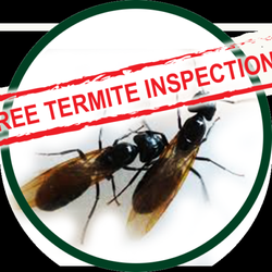 Photo Of Kilter Termite Pest Control Los Angeles Ca United States
