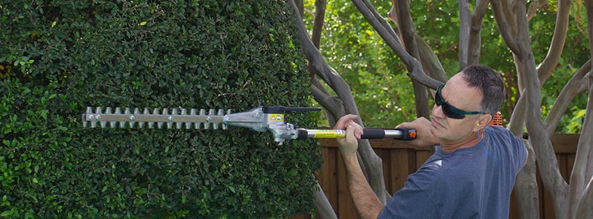 Tom Shively Tree Care: Foresthill, CA