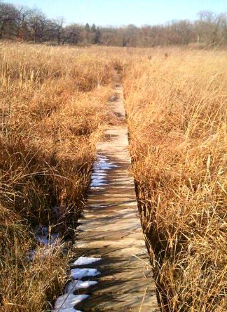 Bluff Spring Fen: 41W039 Bowes Bend Dr, Elgin, IL