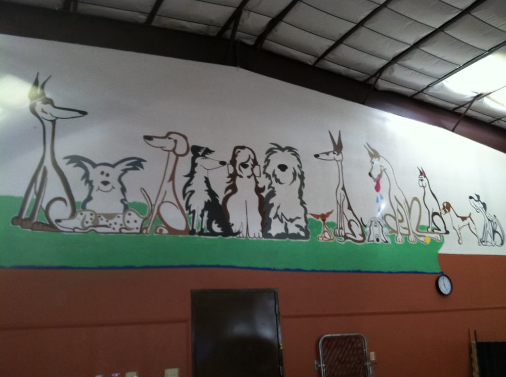 Mesilla Valley Pet Resort: 2500 W Amador Ave, Las Cruces, NM