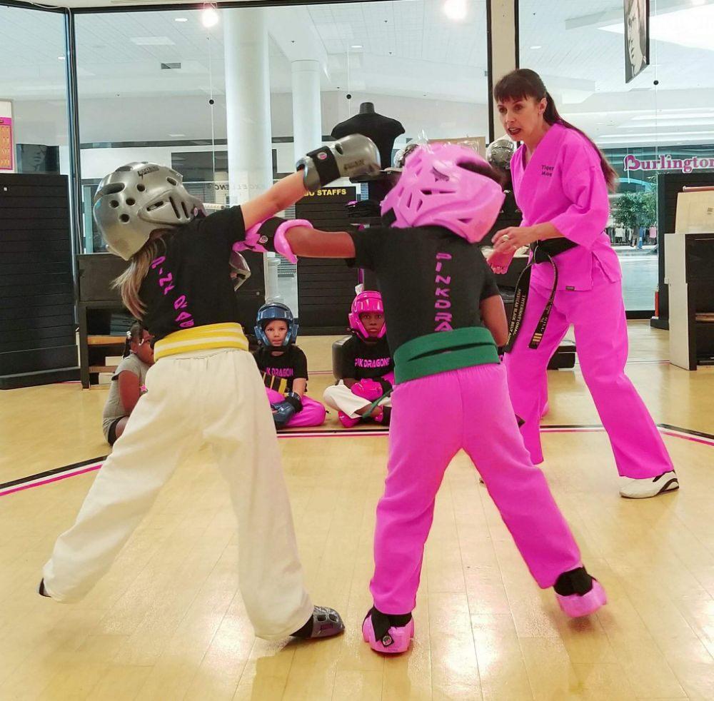 Master Hill's Red Dragon Martial Arts: 4200 Portsmouth Blvd, Chesapeake, VA