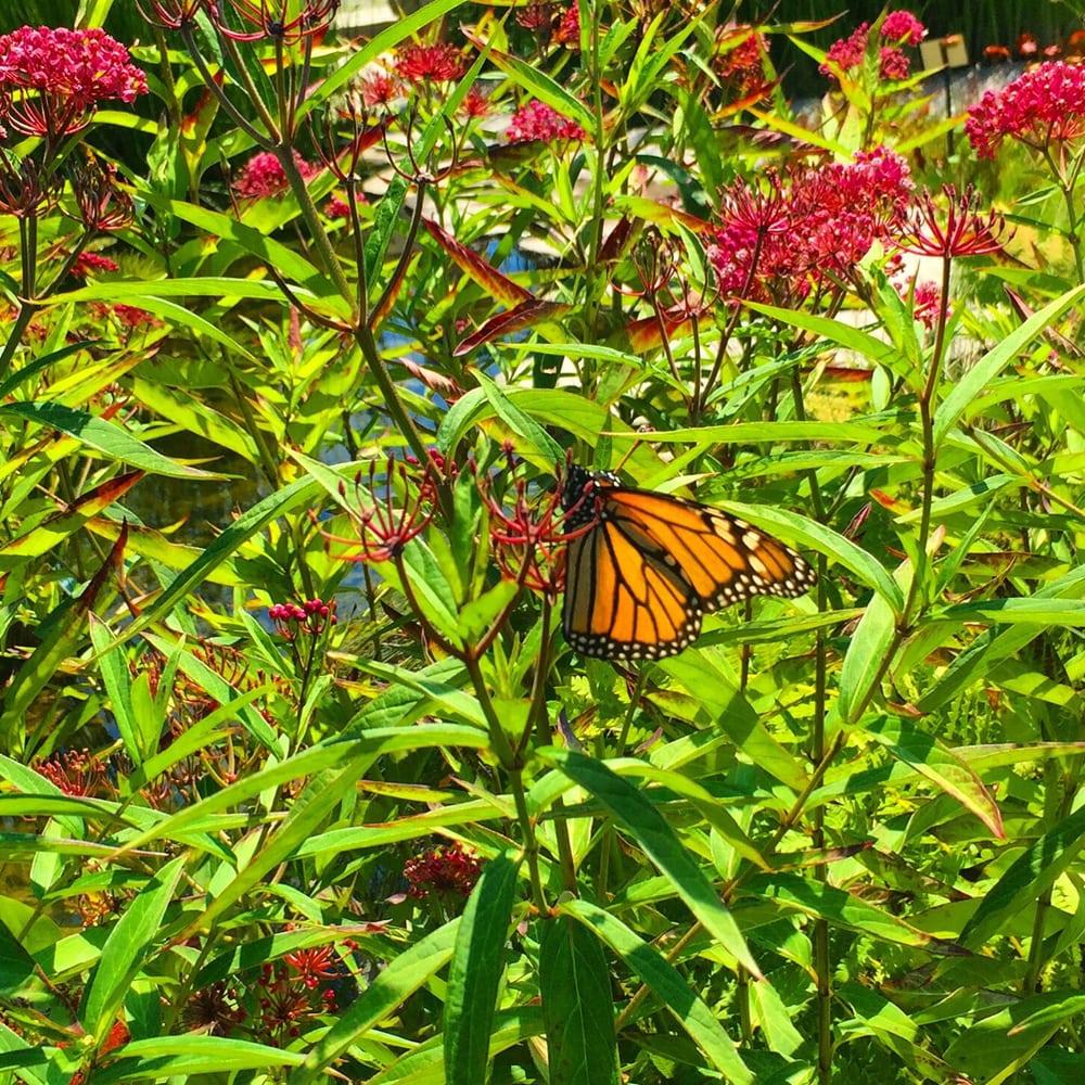 Photos For Coastal Maine Botanical Gardens Yelp