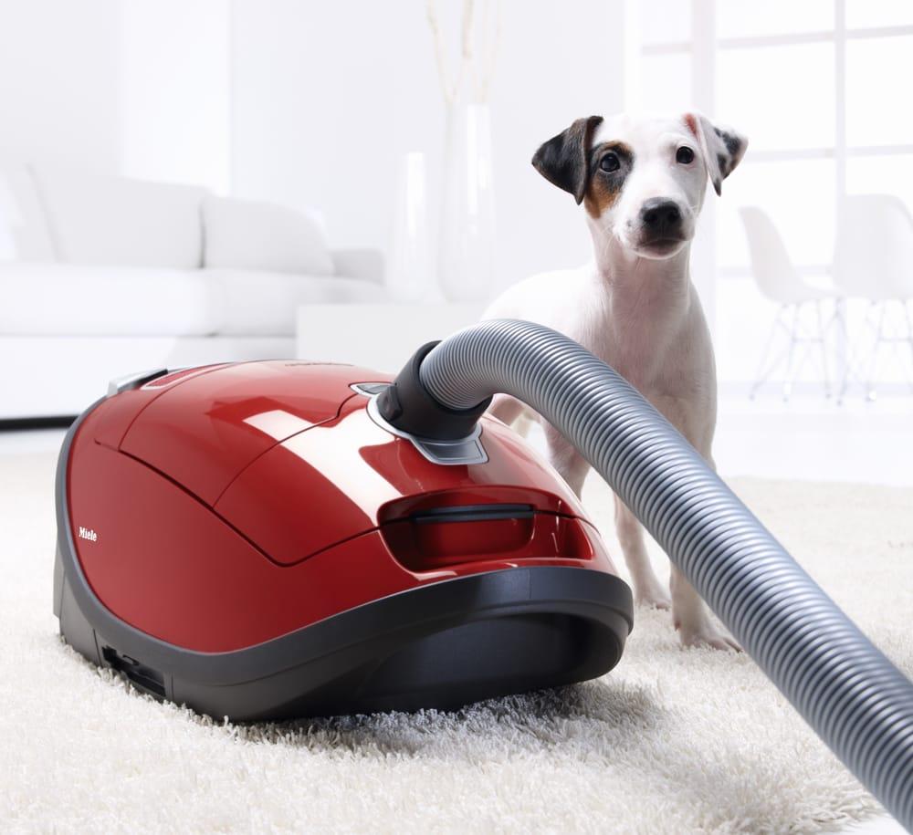 Oreck Vacuums: 109 Williamson Rd, Mooresville, NC