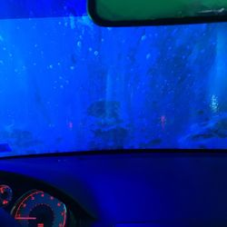Photo Of Delta Sonic Car Wash Williamsville Ny United States
