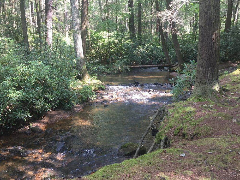 Alan Seeger Natural Area: Stone Creek Rd, Huntingdon, PA