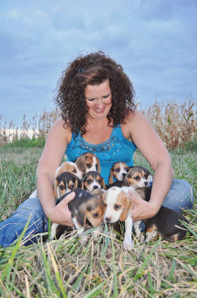 Perfect Puppies 4 You: Lamar, MO