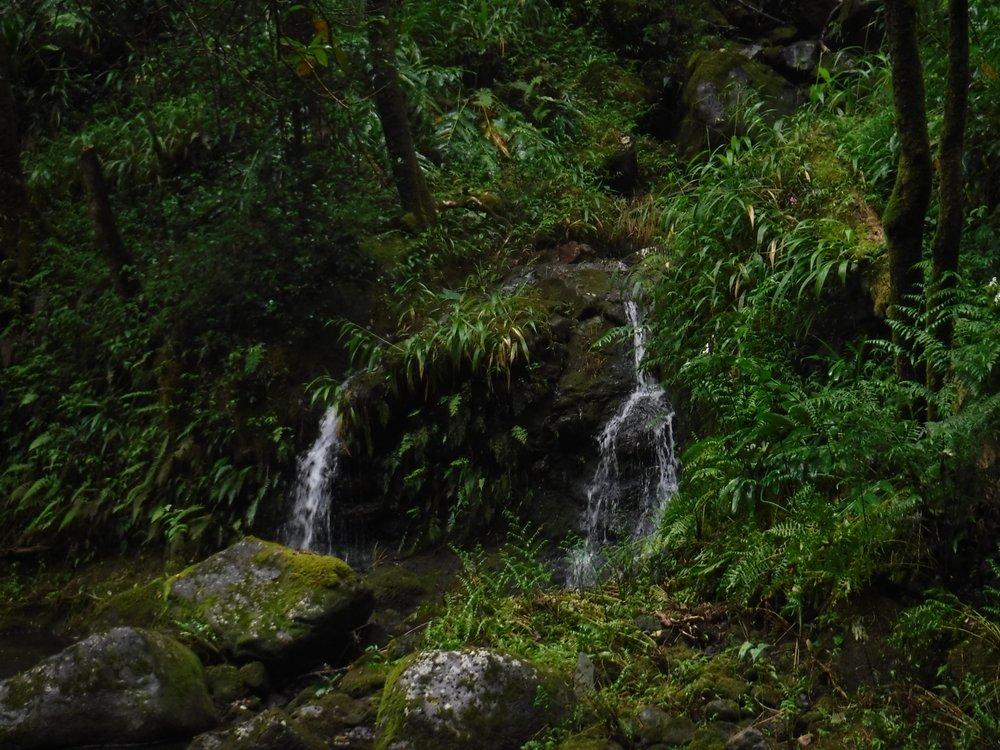 Hi'ilawe Falls: Honokaa, HI