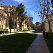 United Photo Of Weyburn Terrace Apartments Ucla Graduate Housing Los Angeles Ca
