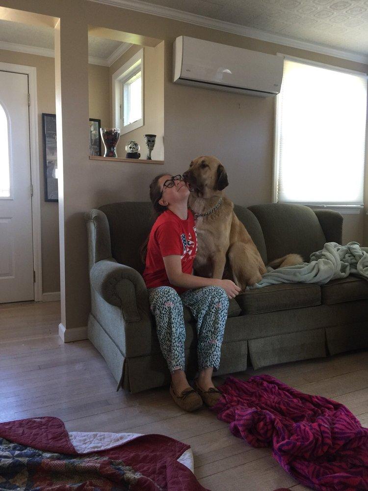 Peace Love Pets Veterinary Care