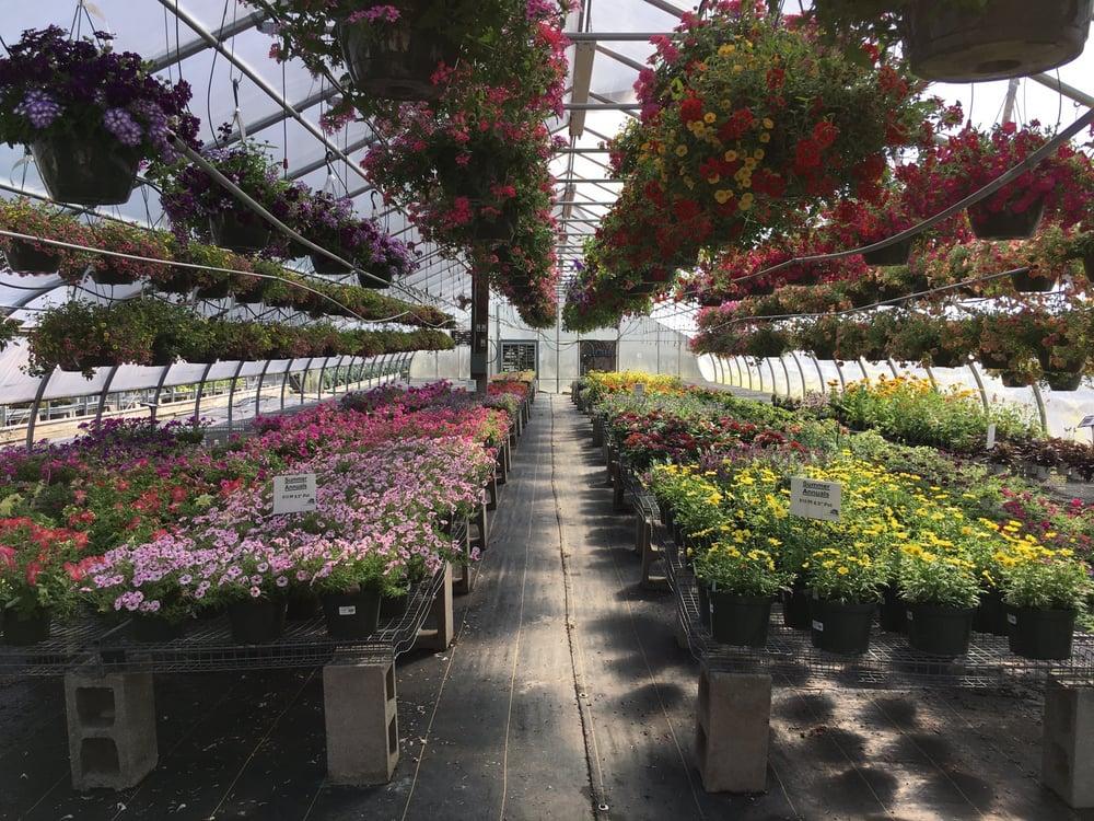Shady Hill Greenhouse Nursery Nurseries Gardening
