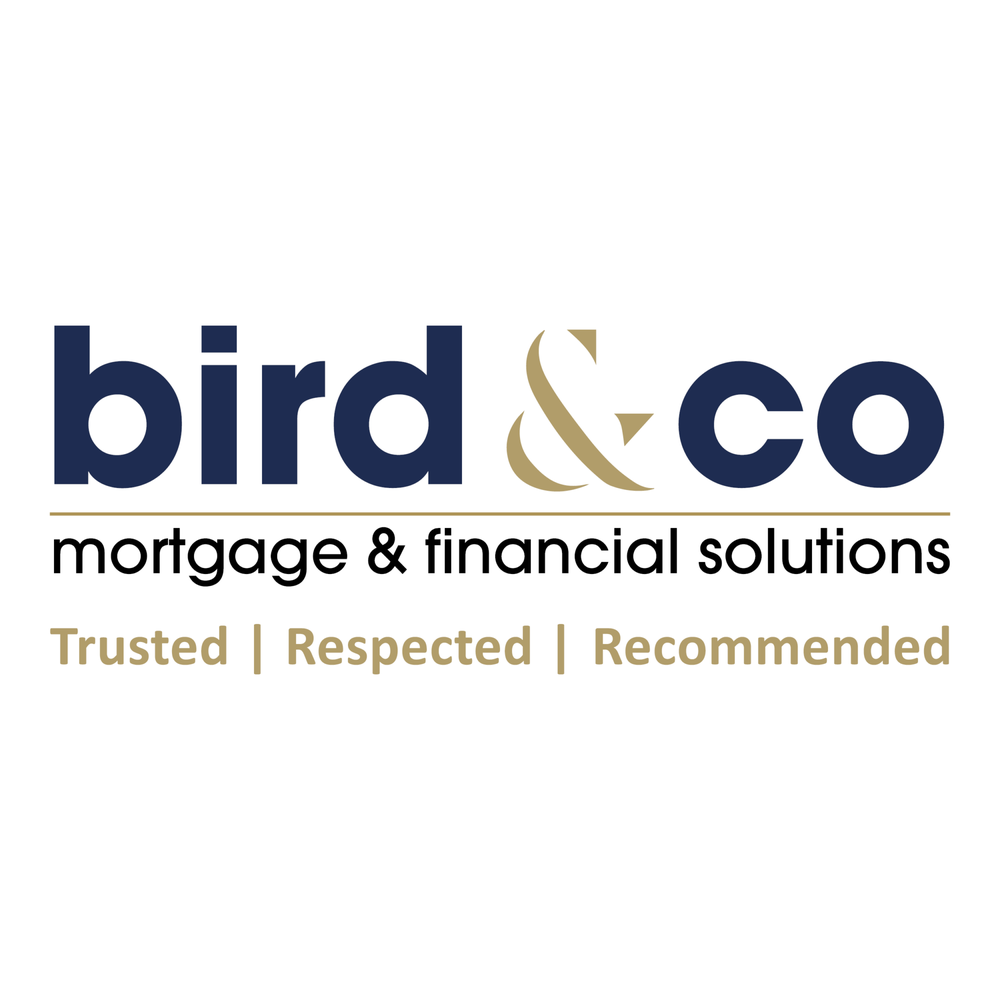 Bird And Co Mortgage And Financial Solutions  Mortgage. Business Consultant Las Vegas. Electronic Employee Time Clock. Solar Panel Installers Senior Living San Jose. Workplace Harassment Lawyer Www Symantec Com. How To Pay Down Debt Fast Sealy Mattress Size. Symptoms Of Developmental Delay. Concord Place Assisted Living Concord Nc. International Moving Companies