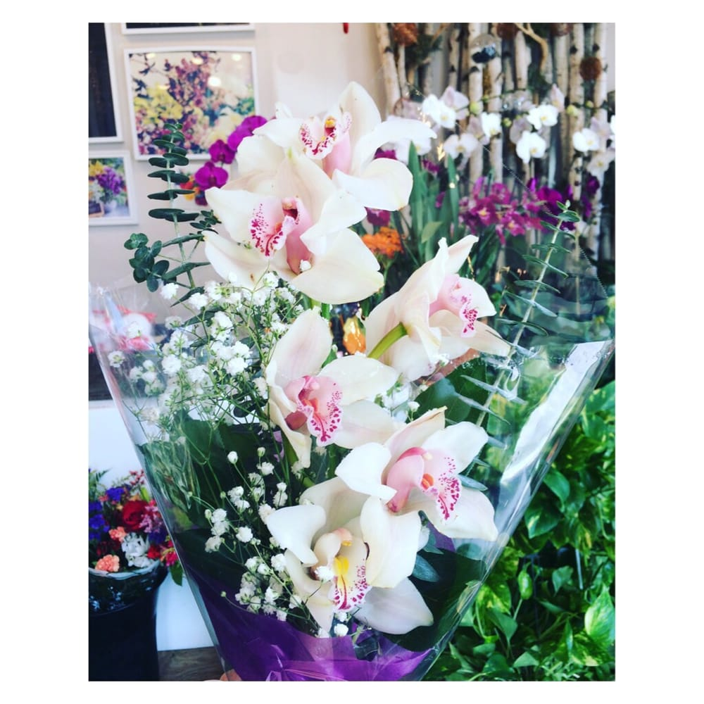 Sharons flowers 21 photos florists 20 e gun hill rd norwood sharons flowers 21 photos florists 20 e gun hill rd norwood bronx ny phone number yelp izmirmasajfo
