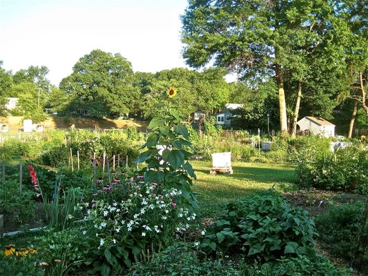 Key Boulevard Community Garden - Nurseries & Gardening - 1601 Key ...