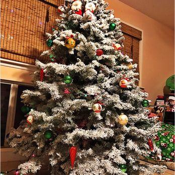 photo of habilitat christmas trees kaneohe hi united states our beautiful christmas